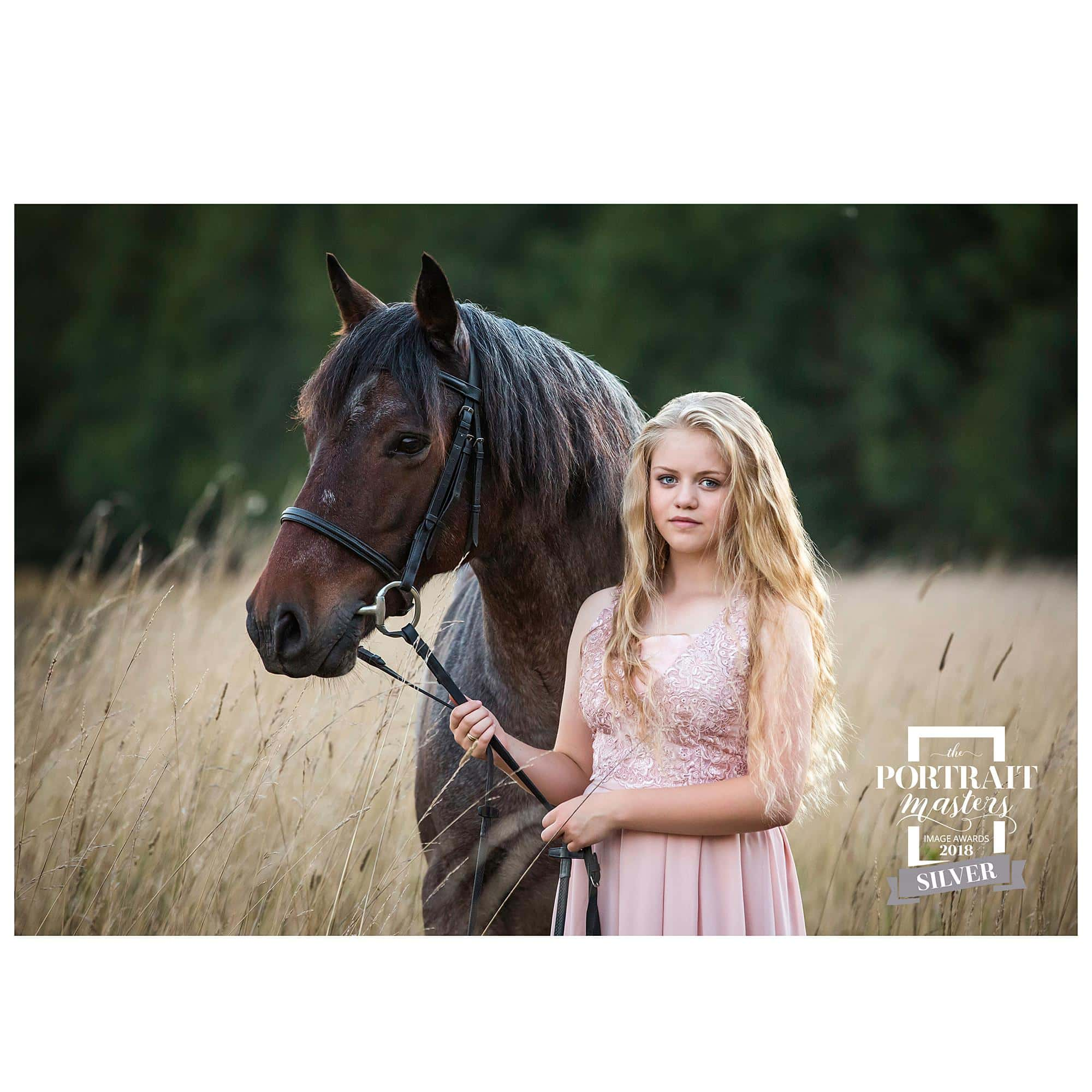 Fine Art Portrait of a Teenage girl in a pink dress with her Roan pony in a field in Stoke By Clare wins a Silver Award from the Portrait Masters