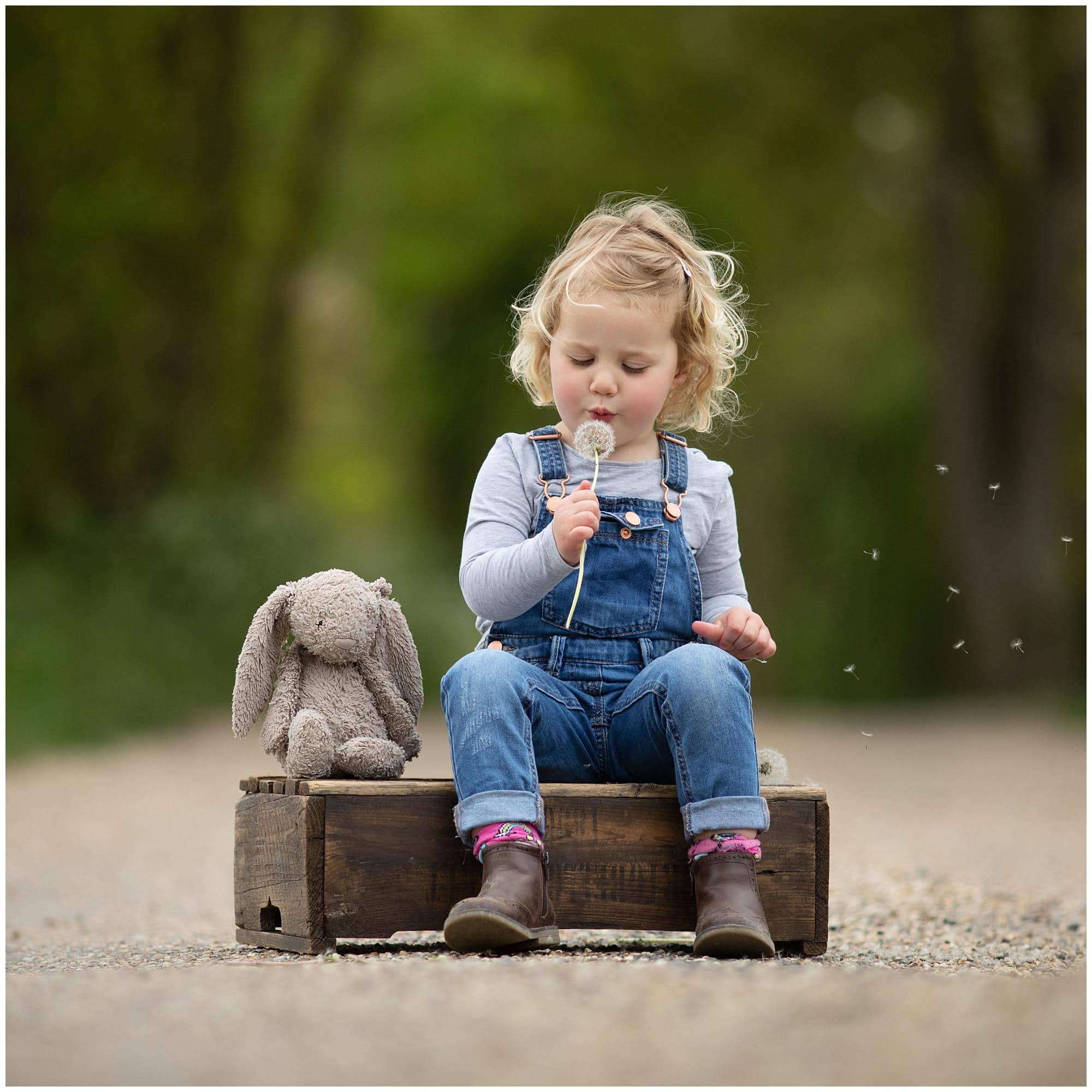 Little girl blows a dandilion head and sits beside her toy bunny