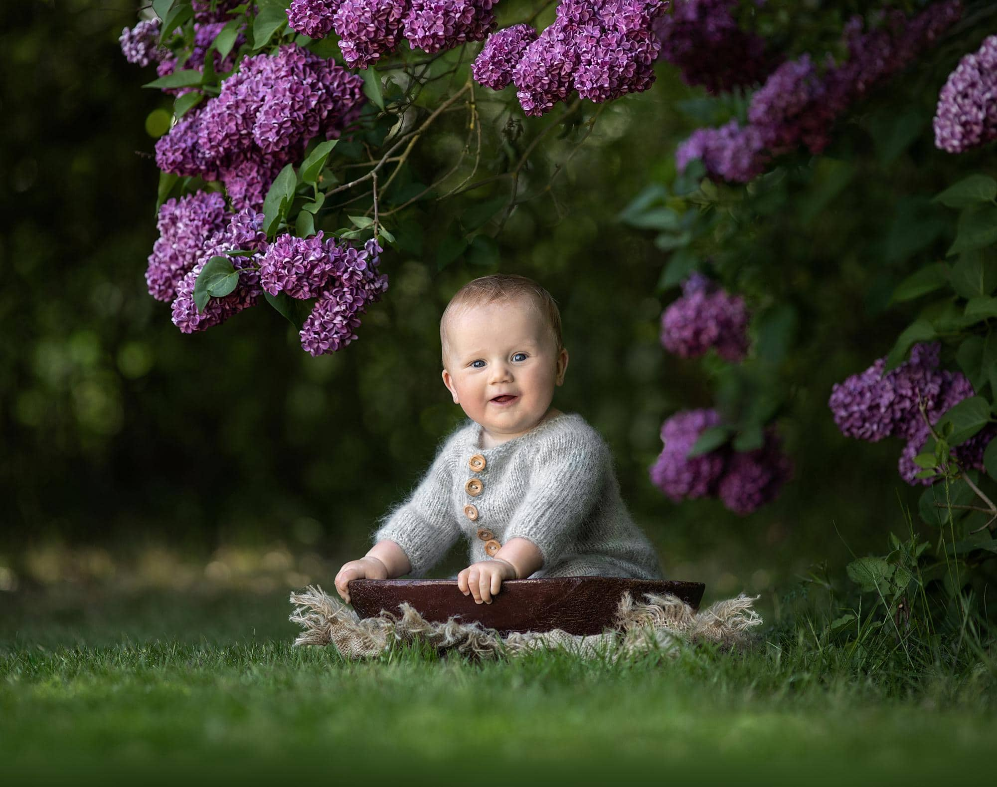 Baby boy sits in a wooden bowl under a Lilac tree in Stoke By Clare, Suffolk