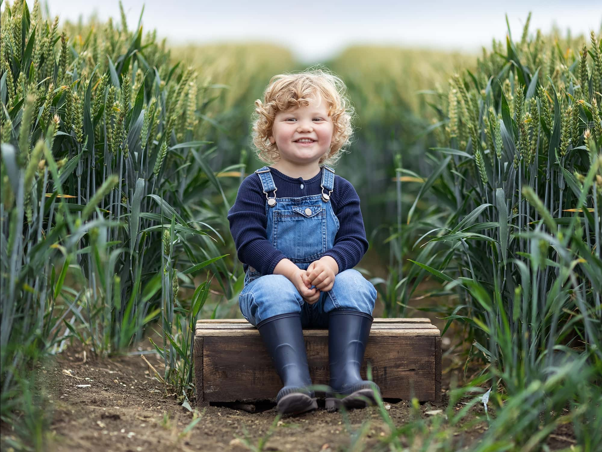 Toddler in dungarees sits on a wooden crate in a wheat field